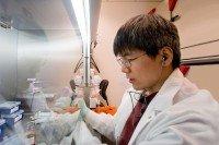 Yu Chen, MD, PhD