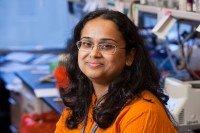 Priya Koppikar, PhD