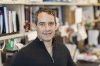Daniel Hirschhorn-Cymerman, PhD