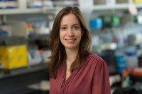 Elizabeth L Calder, PhD
