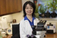 Memorial Sloan Kettering surgical pathologist Jinru Shia