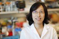 Heesun Cheong, PhD