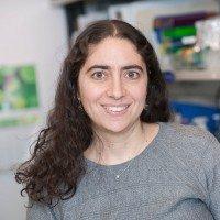 Rona D. Yaeger, MD