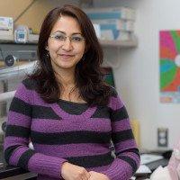 Tripti Shrestha Bhattarai, PhD