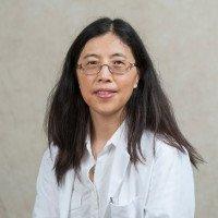 Linda Hong