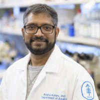 Raghu P. Kataru, PhD