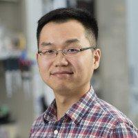 Pei Xin  Lim, PhD