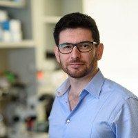 Rodrigo Gularte-Merida, PhD