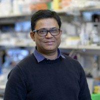 Raghvendra Srivastava, PhD