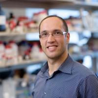 Ross Boltyanskiy, PhD