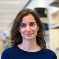Adrienne A. Boire, MD, PhD