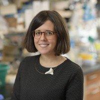 Maria Tello Lafoz, Research Scholar