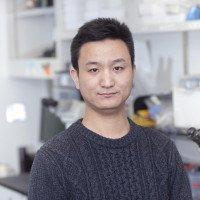 Yunsheng Cheng, PhD