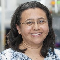 Claudia Canasto, Sr. Research Technician & Lab Manager