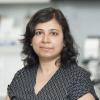 Urmi Bandyopadhyay, PhD