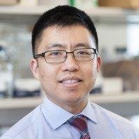 Jason Chan, MD, PhD