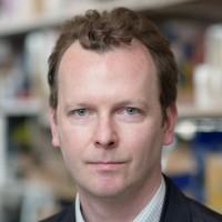David Redmond, PhD