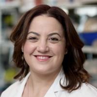 Allison Betof, MD, PhD