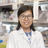 Peng Li, PhD