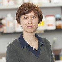 Elena Goldberg, PhD