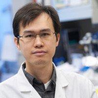 Kai Xu, PhD