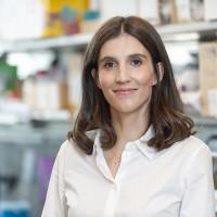 Sarah Lindner, MD