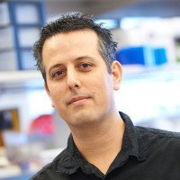 Bruno Moltedo, PhD