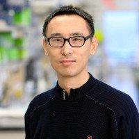 Zhiqiang Li