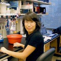 Zhen Zhao, MD PhD