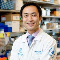 Memorial Sloan Kettering medical oncologist Andrew Chow