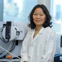 Hui Liu, PhD