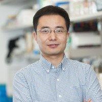Xiaochuan Cai, PhD
