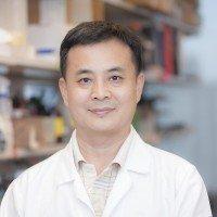 Xianzhong Wu, MD, Laboratory Manager