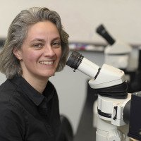 Sonja Nowotschin, PhD