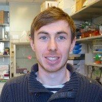 Chris Wardlaw, PhD