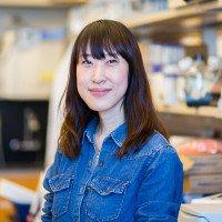 Eugine Lee, PhD
