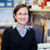 Ninghui Mao, PhD