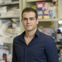 Mohamad Hamieh