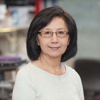 Irene Cheung, ScD