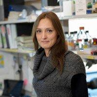 Audrey Le Floc'h, PhD