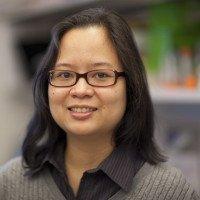 Nerissa Viola-Villegas, PhD