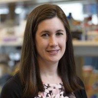 Allison Fay, PhD