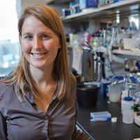 Armida Fabius, PhD