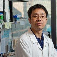 Yongxing Gong, PhD