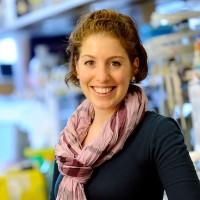 Moriah Heller Nissan, PhD