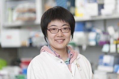 Jieru Li, PhD
