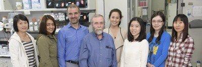Nikola Pavletich Lab Group