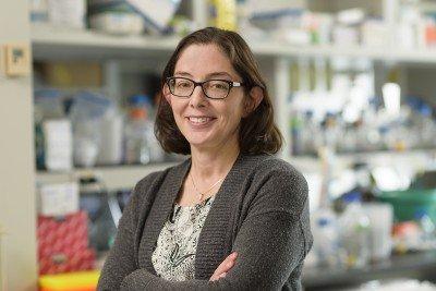 Emily Arias Foley, PhD
