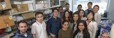 The Eric Lai Lab