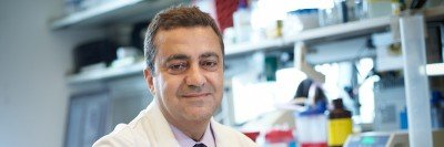 Pictured: Anas Younes, Chief, Lymphoma Service